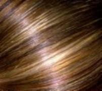 Gulfport hair coloring beauty salon hair services
